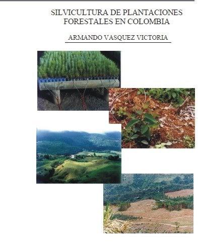 Ingenieria forestal libro silvicultura de plantaciones for Libro viveros forestales