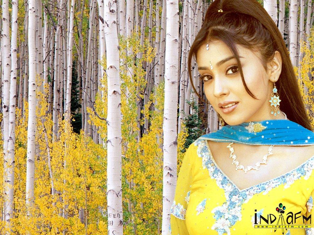 Bollywood Actress shereya Sharan wallpaper Download