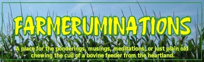 farmeruminations
