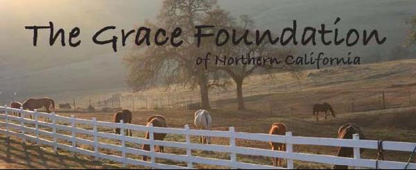 The Grace Foundation