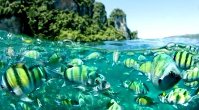 beautiful Thailand Beaches wallpapers pictures