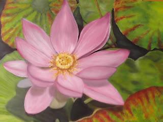 http://2.bp.blogspot.com/_1nF8PAoUeL0/R_SBqt81sKI/AAAAAAAAAEU/8V4_h3nKlQg/s320/lotus.JPG