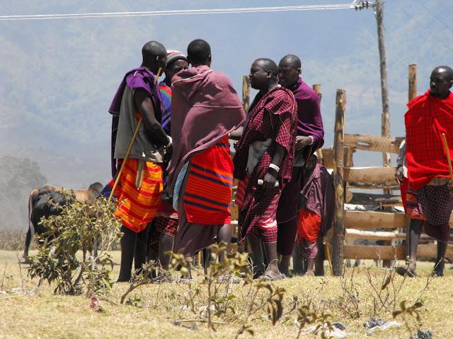 4 novembre - Les masai businessmen