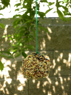 Want to get the kids outside, have fun, and keep them busy for awhile? This simple, inexpensive DIY birdseed pine cone project is perfect for it!