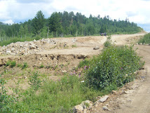Amur Highway