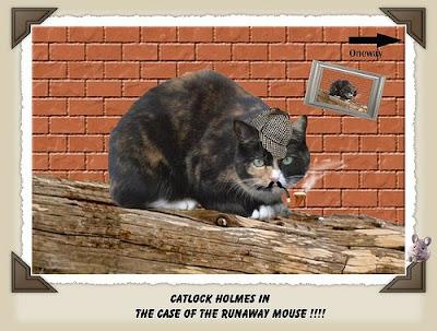 Catlock Holmes