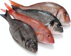 El pescado, !siempre!