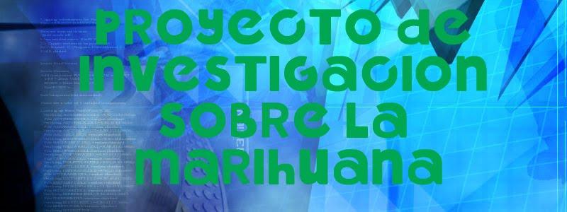 PROYECTO DE INVESTIGACION SOBRE LA MARIHUANA - COLEGIO SAGRADA FAMILIA