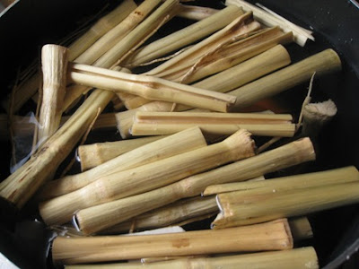 Dried sugar cane