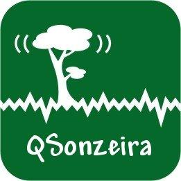 Q!Sonzeira