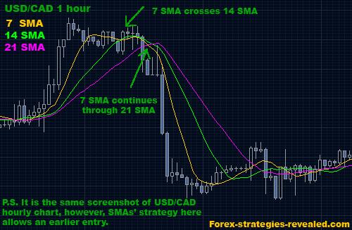 Qual a melhor estrategia forex