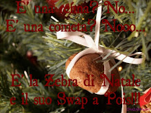 IO PARTECIPO ALLO SWAP A POIS - LO SWAP DI NATALE DI ZEBRA
