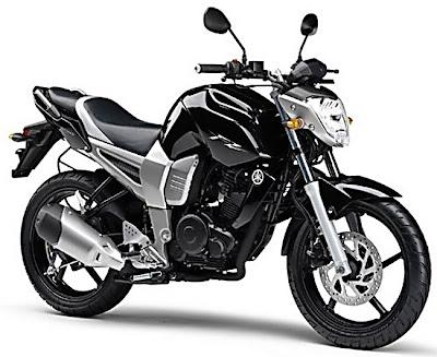 2011 Yamaha F16 Byson