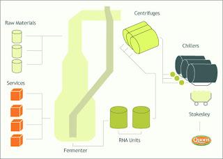 Mycoprotein+diagram