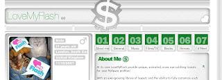 Flash Fetisch Myspace Layouts
