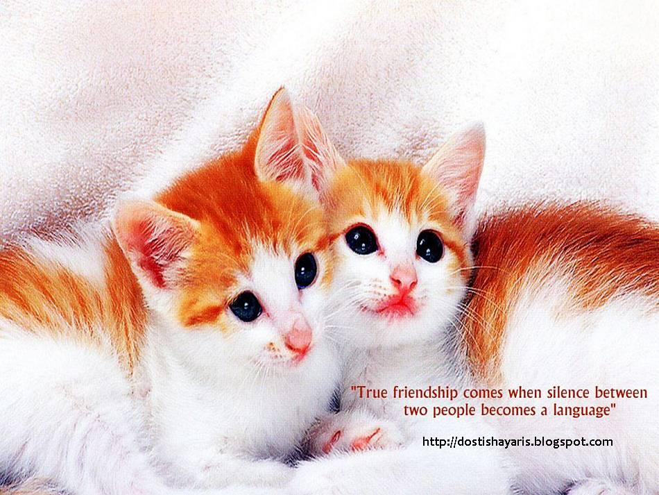 beautiful friendship quotes with. eautiful friendship quotes with. eautiful friendship quotes