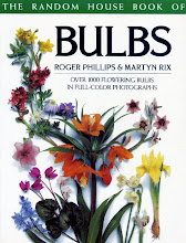 Bulbs