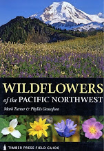 Northwest Native Wildflowers