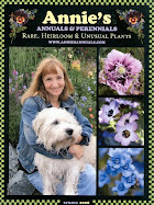 Annuals &amp; Perennials