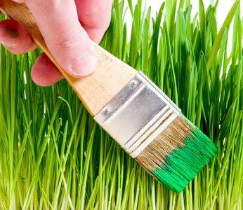Enquête sur le greenwashing (vidéo)
