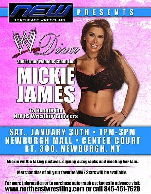 Mickie James-wwe-wrestling