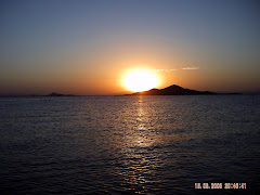 MAR MENOR 2008