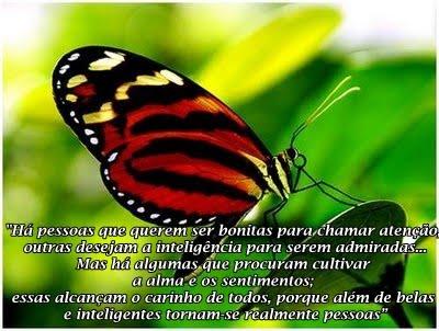 butterfly girl's