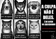 WE CARE 4 ANIMALS