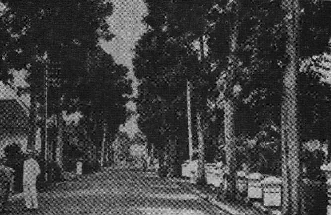 Braga 1911