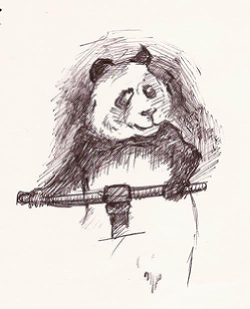 [panda]