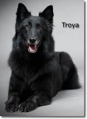 Madre: Troya