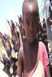 ¿Que Hemos Hecho Por Haiti?
