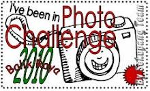 Photo Challenge Balik Raya 2010