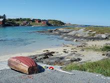 Hvalen på Seløy
