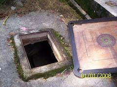 Gambar Tmn Cempaka