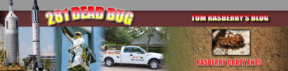 Rasberry Crazy Ants, Houston Pest Control, Tom Rasberry, Pearland, TX