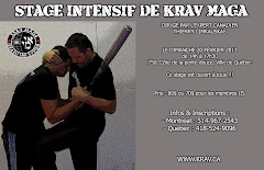 SMINAIRE / KRAV MAGA  QUBEC / DIMANCHE 20 FVRIER 2011 (fini)