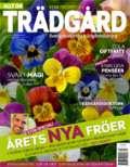 Svarta Blommor/Allt om Trädgård