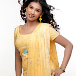 Radhika Selvi Gallery