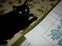 Meeko Black Cat Vintage Tablecloth