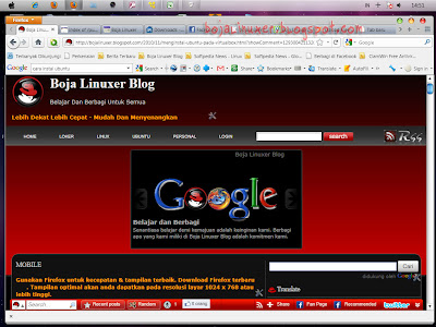 Firefox 4 Windows