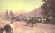 Ganadería y toro cebú en Tecate