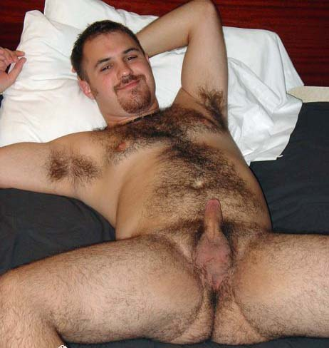 X Rated Hairy Bear Butts
