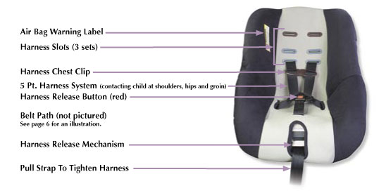 Car Seat Laws In Miami Florida