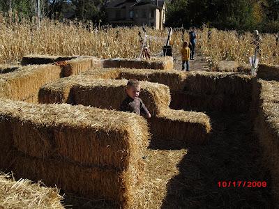 maybe this way - Wheeler Farm Halloween