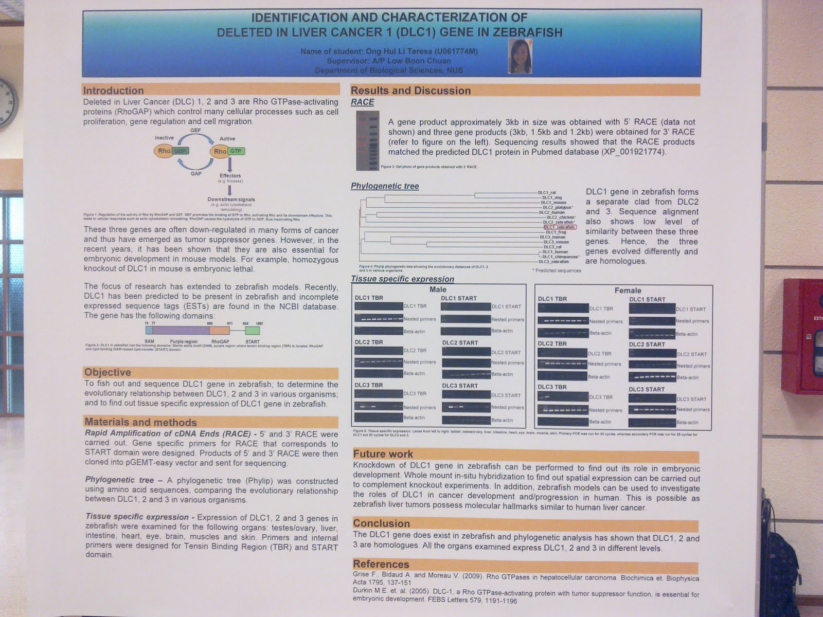 fyp poster presentation | happiness is to be with the people you love., Presentation templates