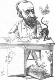 Apel·les Mestres.(Barcelona, 1854-1936) va ser un artista polifacètic dedicat al dibuix, poesia,etc