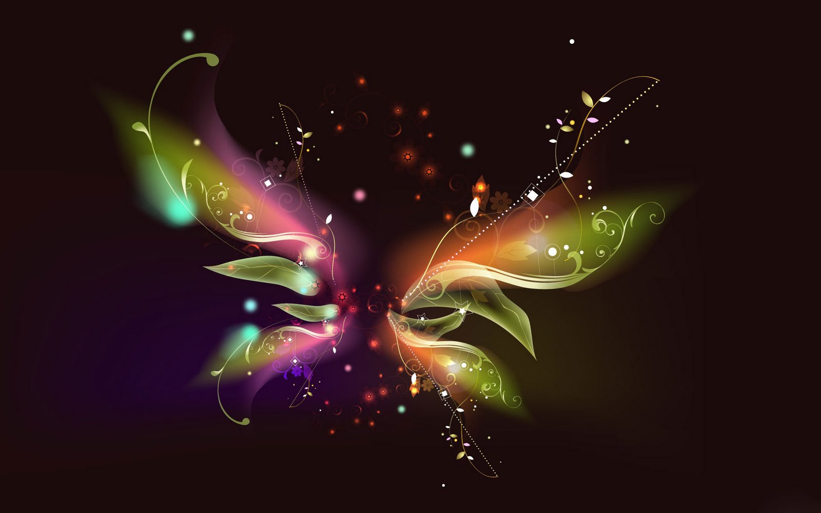 Butterfly Art   Black Background