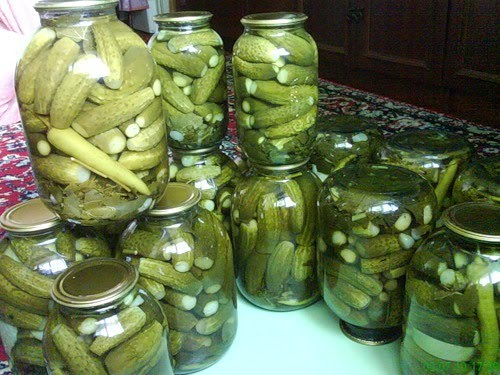 Быстрые рецепты консервирования огурцов