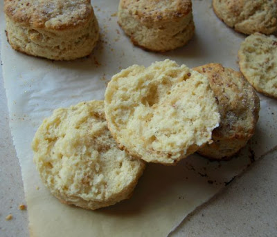 """Daisy Lane Cakes: TWD: Pecan Sour Cream Biscuits, Day 6 of """"8 Days ..."""